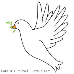 Theologie studieren, den Frieden von Gott anbieten